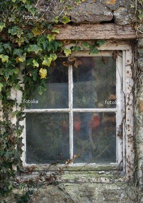 Wallmonkeys Peel and Stick Wall Graphic - Old Cottage Window with Ivy - 36