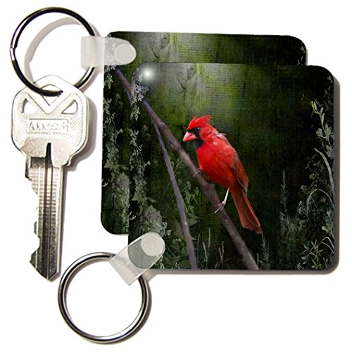 kc_48670 Angel Wings Designs General Wildlife - Birds - Wild Brid - Cardinal Bird in Spring - Art Home Decor - Key Chains