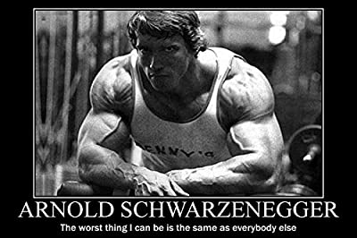 Arnold Schwarzenegger Bodybuilding Motivational Poster 24x36'' Gym Decoration 10