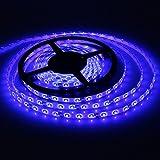 XKTTSUEERCRR Waterproof Blue LED 3528 SMD 300LED 5M 16.4Feet Flexible Light Strip 12V 2A 24W 60LED/M