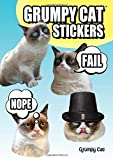 51gPaoP2t3L. SL160  Grumpy Cat Stickers