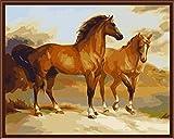 [Madera enmarcada] Pintura al �leo de DIY Por N�meros, Pintura Por N�mero de Kits- Dos caballos 16*20 inch