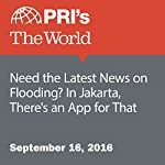 Need the Latest News on Flooding? In Jakarta, There's an App for That | Chris Bentley