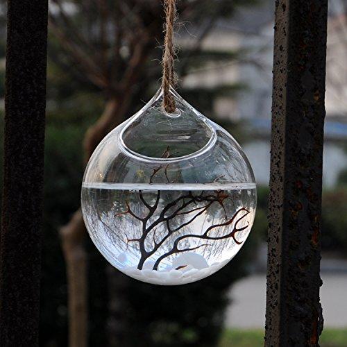 botella-florero-de-flor-planta-colgante-vidrio-transparente-decoracion-para-hogar-12cm