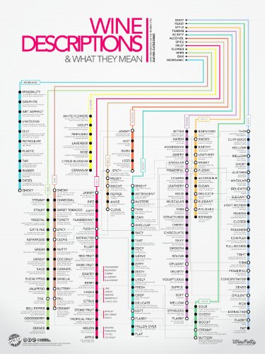120 Wine Descriptors Infographic Poster