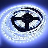 Noza Tec 5M 5050 SMD 300 LEDS WaterProof IP65 Strip Light Cool White