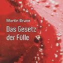 Das Gesetz der Fülle Hörbuch von Martin Brune Gesprochen von: Martin Brune