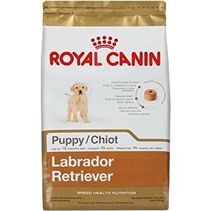 Royal Canin Labrador Retriever Puppy Dry Dog Food, 30-Pound Bag