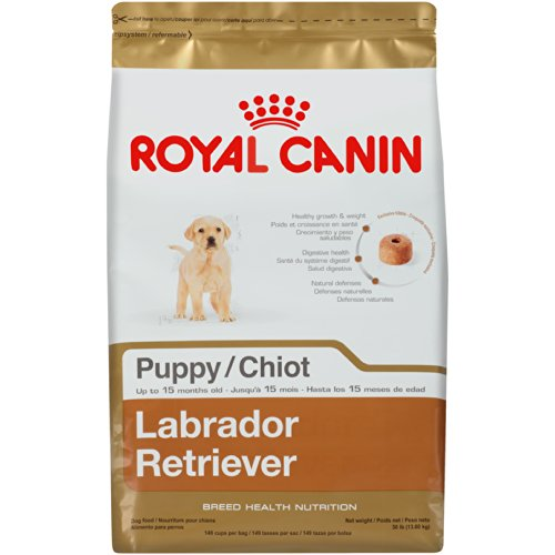 royal canin labrador retriever puppy dry dog food 30. Black Bedroom Furniture Sets. Home Design Ideas