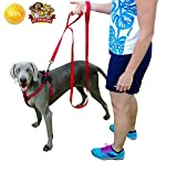 Loops 2 Double Padded Handles Nylon Dog Leash 8 ft Extra Long 2 Handled Dog Leash Double Loop Lead - GREAT For Dog Training