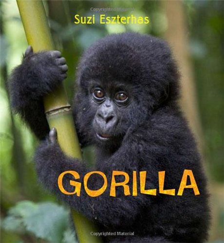 Eye on the Wild: Gorilla