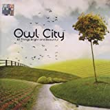 All Things Bright And Beautiful Owl City