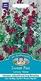 Mr. Fothergill's 21324 20 Count Solway Velvet Sweet Pea Seed