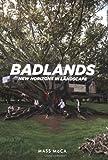 Badlands: New Horizons in Landscape