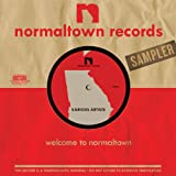 Normal Town Records Sampler