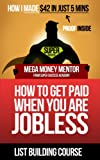 Mega Money Mentor - List Building Course