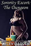 Sorority Escort - The Dungeon: A French Billionaire BDSM Romance