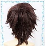 Amagi Brilliant Park Anime Seiya Kanie Cosplay Wig Dark Brown Hair