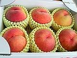 長野県産 信州名産桃「ワッサー」 上級ランク(5~9玉入り)お試し向き 約1.8~2kg入り/箱 ネクタリンと桃の掛け合わせ品種 ランキングお取り寄せ
