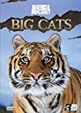 Discovery Channel - Big Cats [DVD]