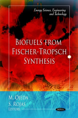 Biofuels from Fischer-Tropsch Synthesis (Energy Science, Engineering and Technology)