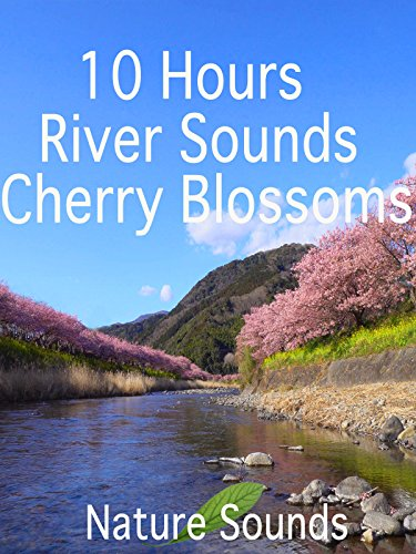 10 Hours River Sounds-Cherry Blossoms