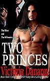 Two Princes: The Biker and The Billionaire (Sons of Sanctuary MC) (Volume 1)
