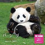 ころころパンダカレンダー2017 壁掛け(ミニ) ([カレンダー])