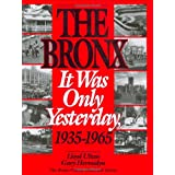 The Bronx: It Was Only Yesterday, 1935-1965 (Life in The Bronx Series) ~ Lloyd Ultan
