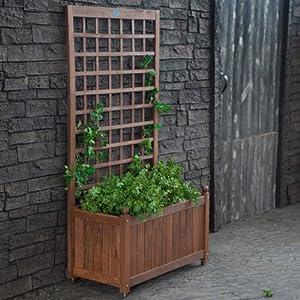 Trellis Box