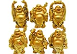 Shraddha Shree Gems Set of good luck 6 Laughing Buddha - for prosperity ,good luck, wealth and health