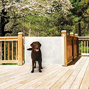 Bundle-65 Retractable Gate (Set of 2)