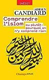 Comprendre l'islam: ou plutôt : pourquoi on n'y comprend rien