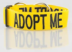 """Dog Awareness Color Coded Semi-Choke Dog Collar PREVENTS Accidents By Warning Others of Your Dog in Advance! Friendlydogcollars """"Caution, No Dogs, Friendly, Nervous, Blind Dog, Deaf Dog, Training, Working, Adopt Me, Do Not Feed"""" (Yellow ADOPT ME (New Home Needed)"""