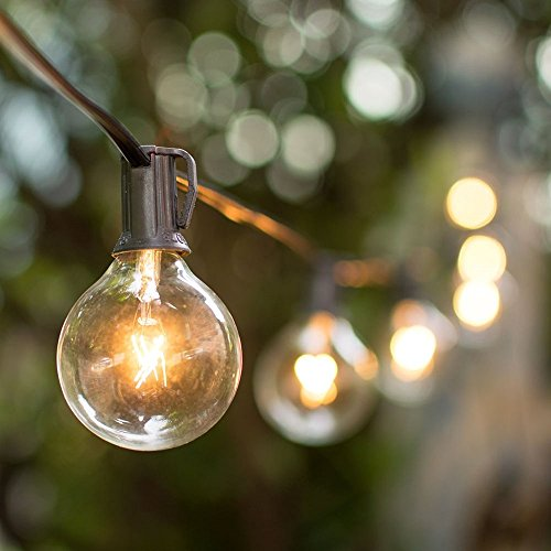 String Lights Standard Bulb : Globe String Lights, 2 Inch Bulbs, Incandescent Clear Glass Bulbs, 50 Feet Black Wire, Outdoor ...