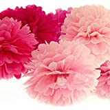 BCP Pack of 6pcs, 2 Sizes Tissue Paper Flower Pom Poms for Weddings, Birthday Parties Decorations and More