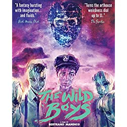 The Wild Boys [Blu-ray]