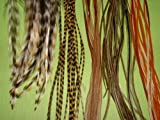 Reggae Rhumba 5 Feather Hair Extension Kit, Natural Grizzly, Olive and Golden Brown Shades