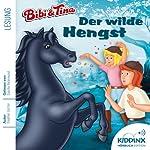 Der wilde Hengst (Bibi und Tina) | Stephan Gürtler