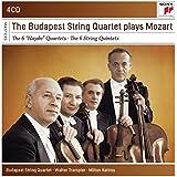 """6 """"Haydn"""" Quartette & 6 Streichquintette"""