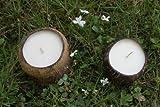 Candles Naturally Large Soy Wax Vanilla Coconut Shell Candle, Natural