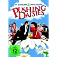 Pushing Daisies - Staffel 2 [4 DVDs]