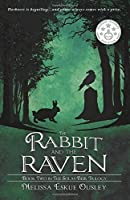 The Rabbit and the Raven: Book Two in the Solas Beir Trilogy (Volume 2)