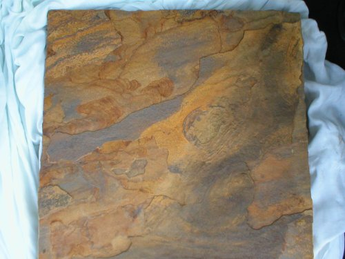 Flagstone Stepping Stone Mold