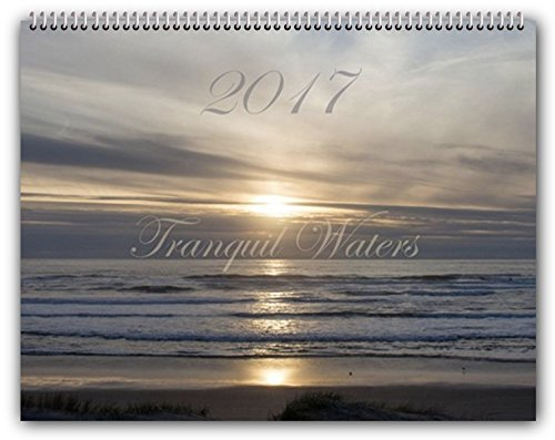 2017 Tranquil Waters Wall Calendar Large 11x14