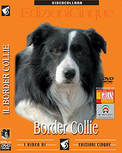 border-collie-1-dvd
