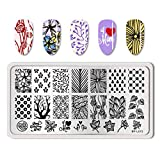 Summer Fruit Nail Art Stamping Template Tropical Punch Pattern Rectangle Image Plate Stamping Polish Needed BP-L015 (Color: BP-L015)