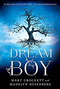 Dream Boy by Madelyn Rosenberg ebook deal
