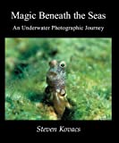 Magic Beneath the Seas: An underwater photographic journey