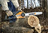 WORX 16-Inch 14.5 Amp Electric Chainsaw with Auto-Tension, Chain Brake, and Automatic Oiling - WG303.1